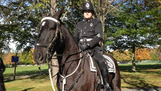 Meet Harvey, a Percheron Cross who will serve with the Royal Newfoundland Constabulary's mounted unit, and his partner Const. Jason Coombs.