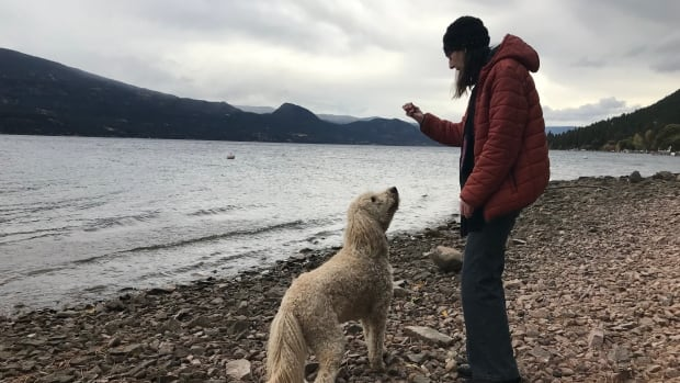 Lake Country resident Marie Malloy regularly walks along the shoreline with her dog and calls it 'a beautiful public beach.'