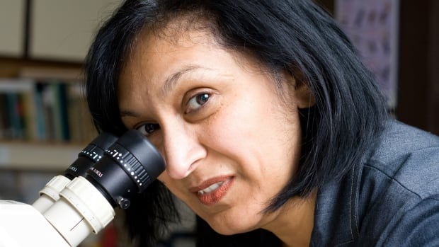 Agriculture Canada entomologist Christine Noronha says invasive bugs are on the hunt for good places to hibernate.