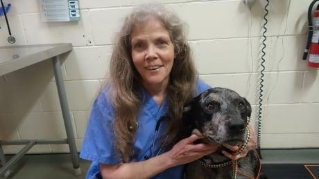 Veterinarian shaving her head for Humane Society thumbnail
