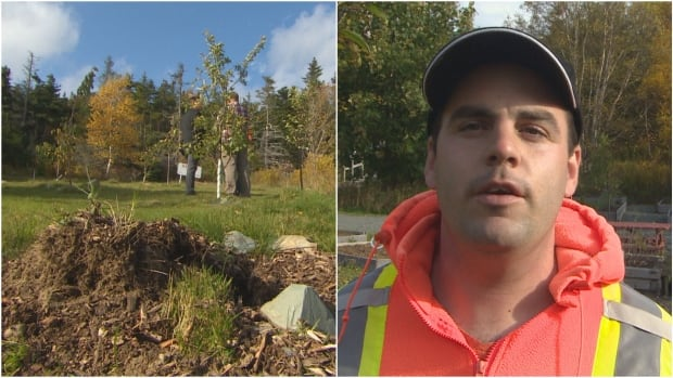 Jimmy Everard is a grounds assistant at the Autism Society of Newfoundland and Labrador. He was shocked to find trees he planted stolen from the ground on Friday.