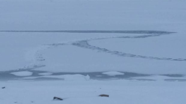 The photo seems to show snowmobile tracks that begin top left, and ends near top right where it appears to have fallen into the ice. Two human tracks appear to be crawling to shore, according Francis Emingak who checked out the scene.