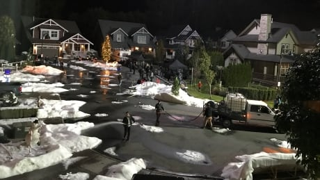 'If I wanted to live in Hollywood I would have moved there': B.C. movie shoots disrupt civic life