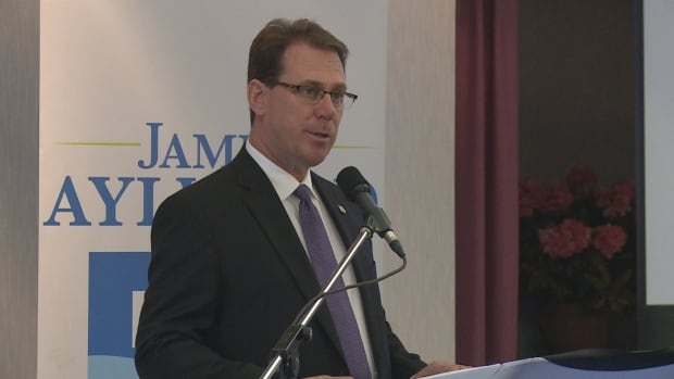 Newly elected Progressive Conservative leader James Aylward addresses his party for the first time, Saturday, at the Rodd Brudenell River Resort.