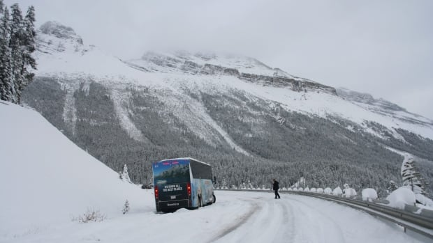 David Harrap said he felt abandoned when the Brewster bus he was on became stranded for hours on a snowy highway in Banff National Park.