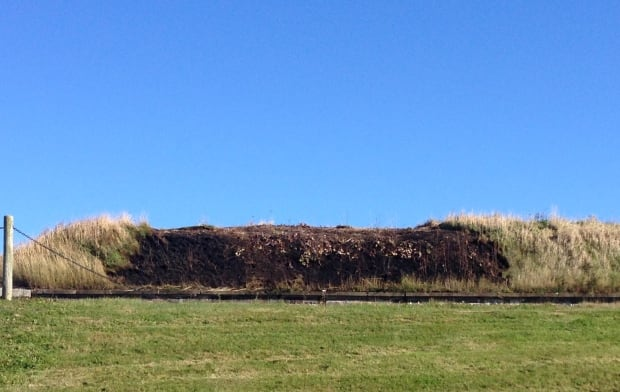 Citadel Hill fire