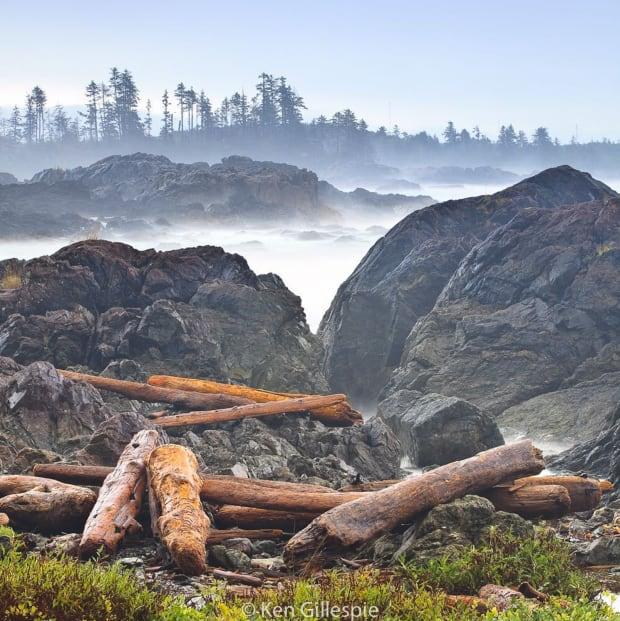 Coast of B.C. - Ken Gillespie