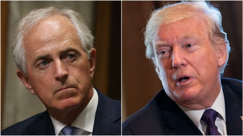 Trump blasts Bob Corker, says he 'couldn't get elected dog catcher'