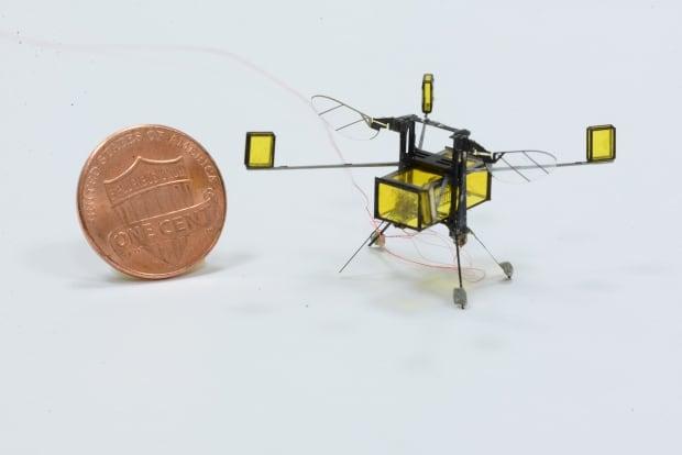 RoboBee can dive, swim and fly