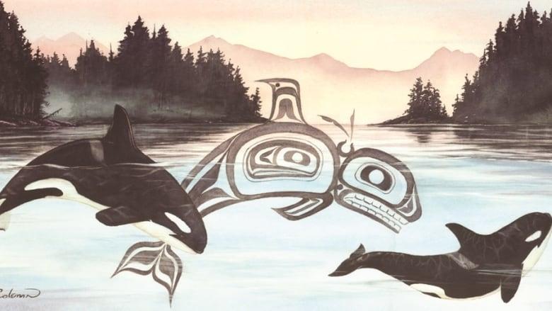 Non Indigenous Artist Sue Coleman S Spirit Of The Orca