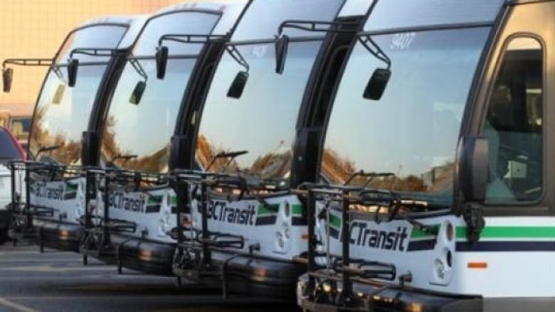 B.C. Transit to extend late-night bus service in Greater Victoria