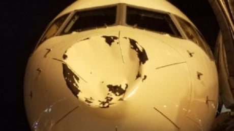 OKC Thunder's plane had nose caved in by bird, Delta says