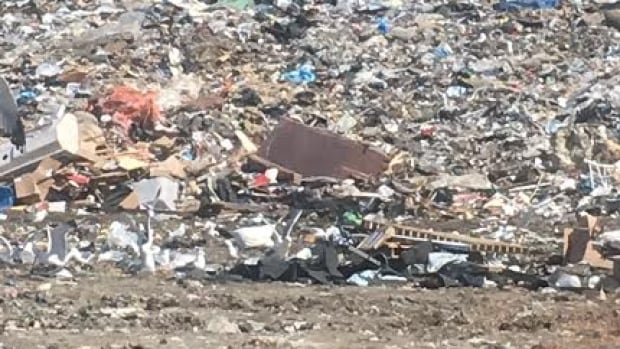 A decision from the Saskatchewan Labour Relations Board suggests CUPE Local 21 was more concerned about making sure male workers at Regina's landfill didn't endure discipline for harassment than the fact that three women who worked there had been driven from the workplace.