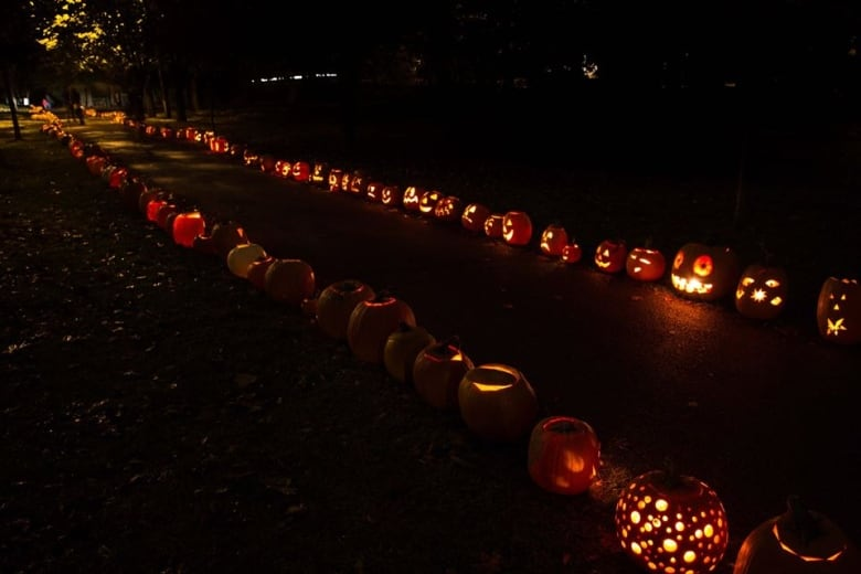New life for old jack-o'-lanterns along 'Pumpkin Path' | CBC News