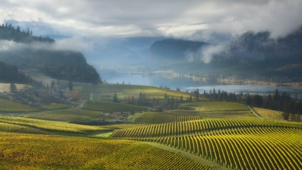 The Thompson Okanagan is the first region in Canada to receive this designation.