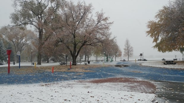 Calgary weather: snowfall warning issued by Environment Canada