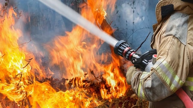The Town of Deep River has missed the deadline to respond to a provincial inquiry into the state of their fire services.