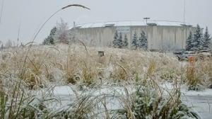 Northlands Coliseum