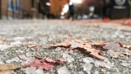 Salt on a sidewalk in Vancouver's Kerrisdale area