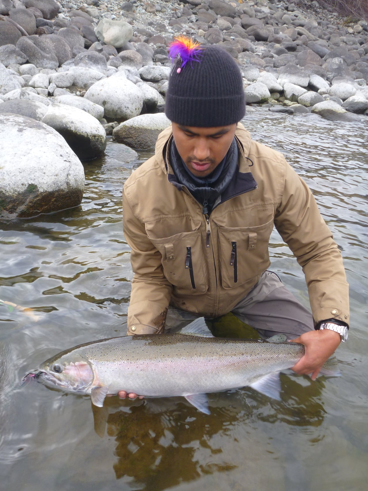 56284791866  Extremely close to being gone forever   B.C. fisheries manager says feds  failing Interior steelhead