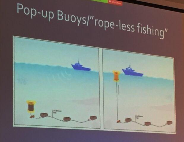 ropeless fishing gear