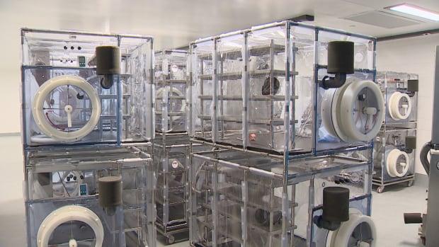 Isolators germ-free