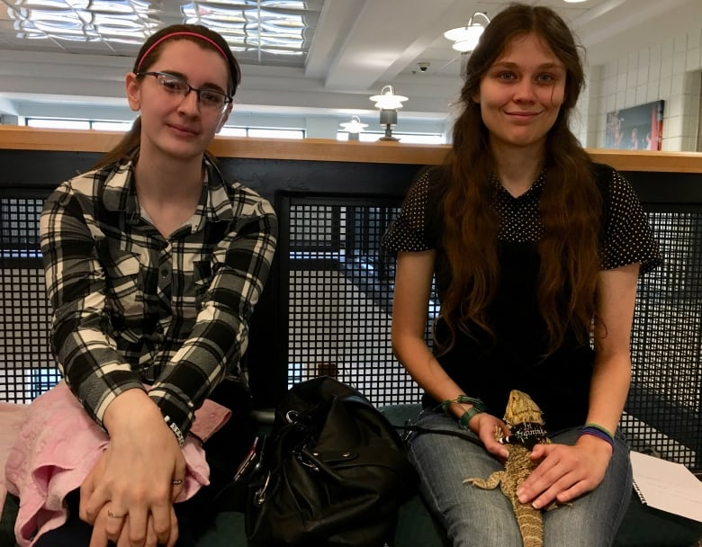 Bearded dragons help university students confront anxiety