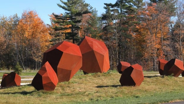 Dark is the artist behind the instalment Erratic Field, an idea inspired by stones that were dropped by the glacier around Ottawa's Cardinal Creek park.