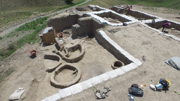 This is a drone photograph of excavations at Gadachrili Gora site in the Republic of Georgia. It's one of two neolithic sites where jars containing wine residues were found. The rectangles are a grid built by archeologists, the large circles are the remains of mud-brick houses, and the small circles are storage areas.