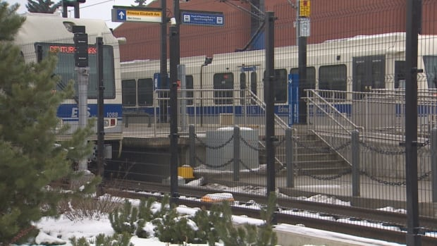 Two trains sit beside the NAIT platform before they run south to downtown Edmonton Monday.