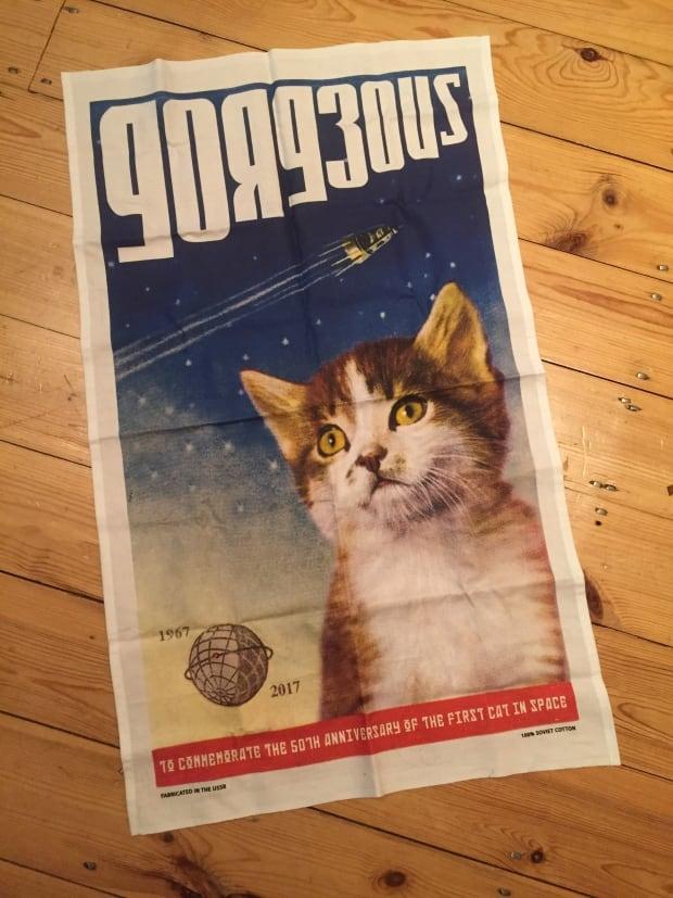 space cat towel