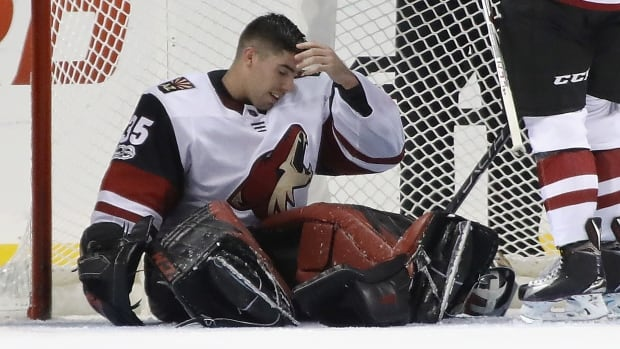 The Arizona Coyotes have traded goaltender Louis Domingue to the Tampa Bay Lightning.