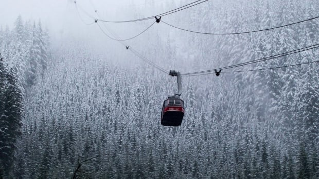 About 70 students were temporarily stranded on Grouse Mountain on Tuesday afternoon.
