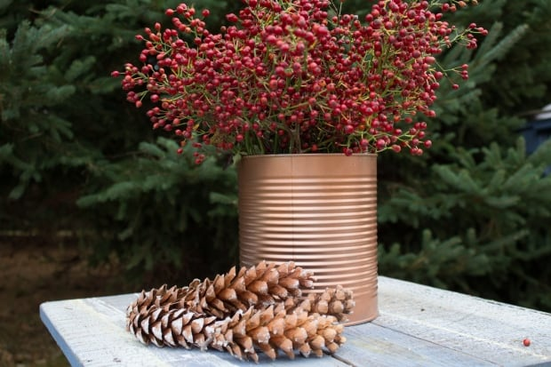 Pine cones and red berries