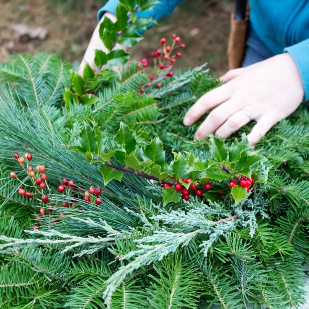 Sprigs of holly, red berries, cedar and pine