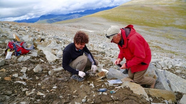 How Yukon's melting ice reveals human artifacts and Indigenous history