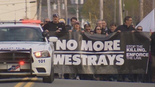 Westray anniversary march