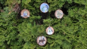 Mystery ornament angel spreads Christmas cheer in Vernon, B.C.