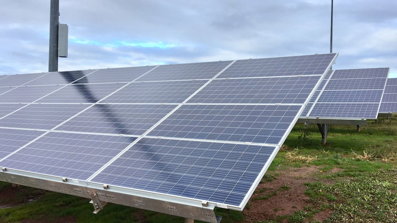 SaskPower really failed us': Woman says utilities' solar