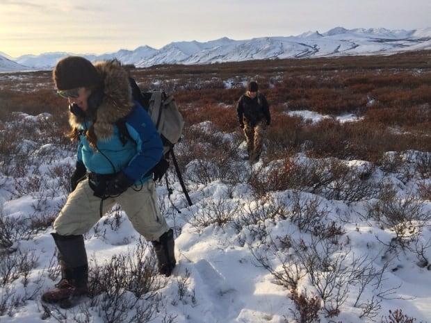 Walking through snowy tundra