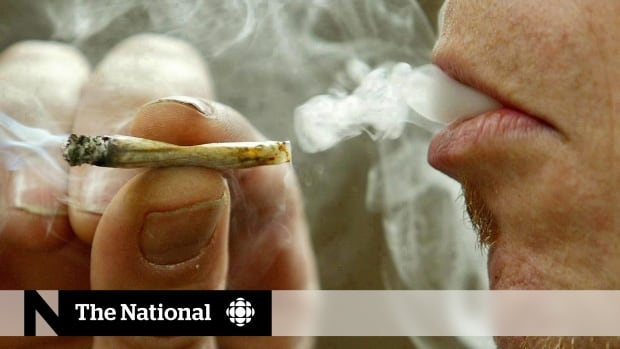 Provincial proposals for controlling the sale and use of marijuana differ wildly.
