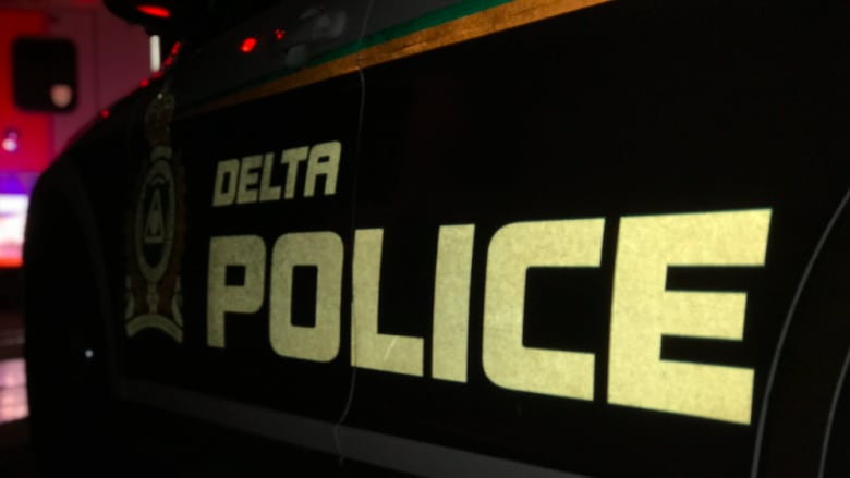 Man charged with bear-spray assault, another hit by truck in Delta