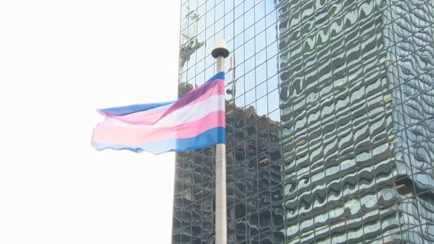 Toronto Police trans flag raising