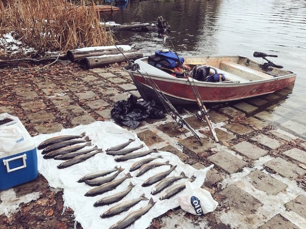 19 fish were confiscated off of Gardom Lake
