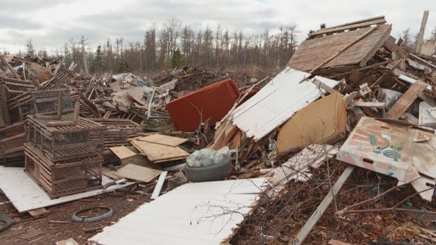 Sofas, lobster traps, and even a laptop computer are some of the items people have recently left at the old dump in O'Leary.