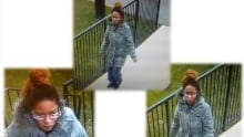 Weston road stabbing suspect aided by this woman