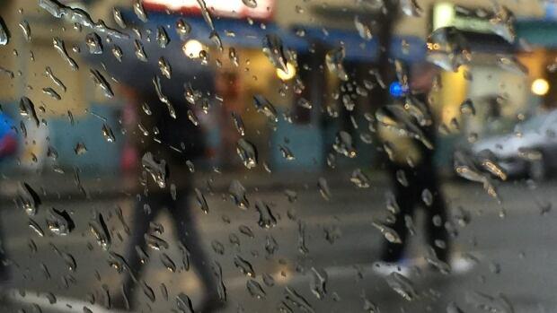 rainfall warning south coast