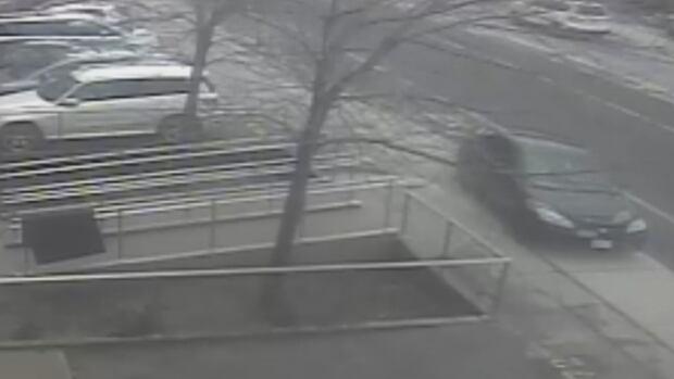 Fekre video