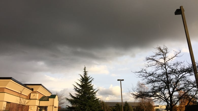 Special weather statement for rain, thunderstorms issued for B.C. Interior