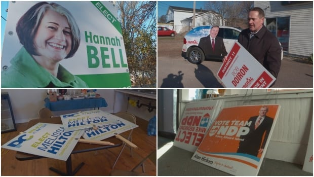 Signs from most of the campaigns have faced some damage, candidates say.